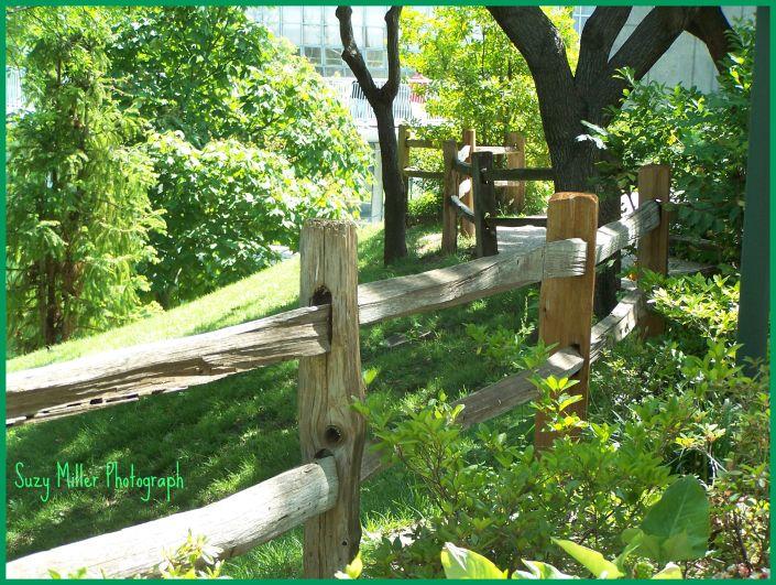 Botanical gardens fence