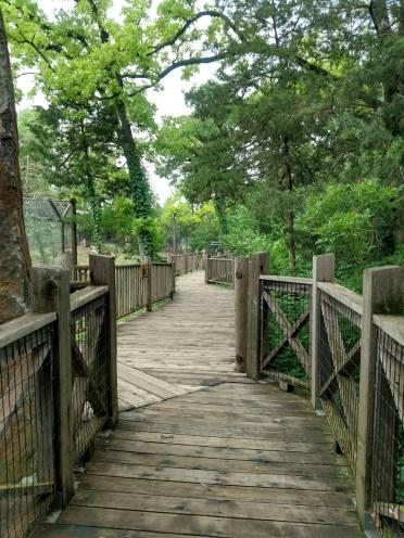 Winding pathway...